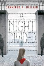 A Night Divided cover